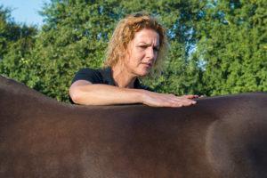 Claudi Leijten fysiotherapie voor paarden
